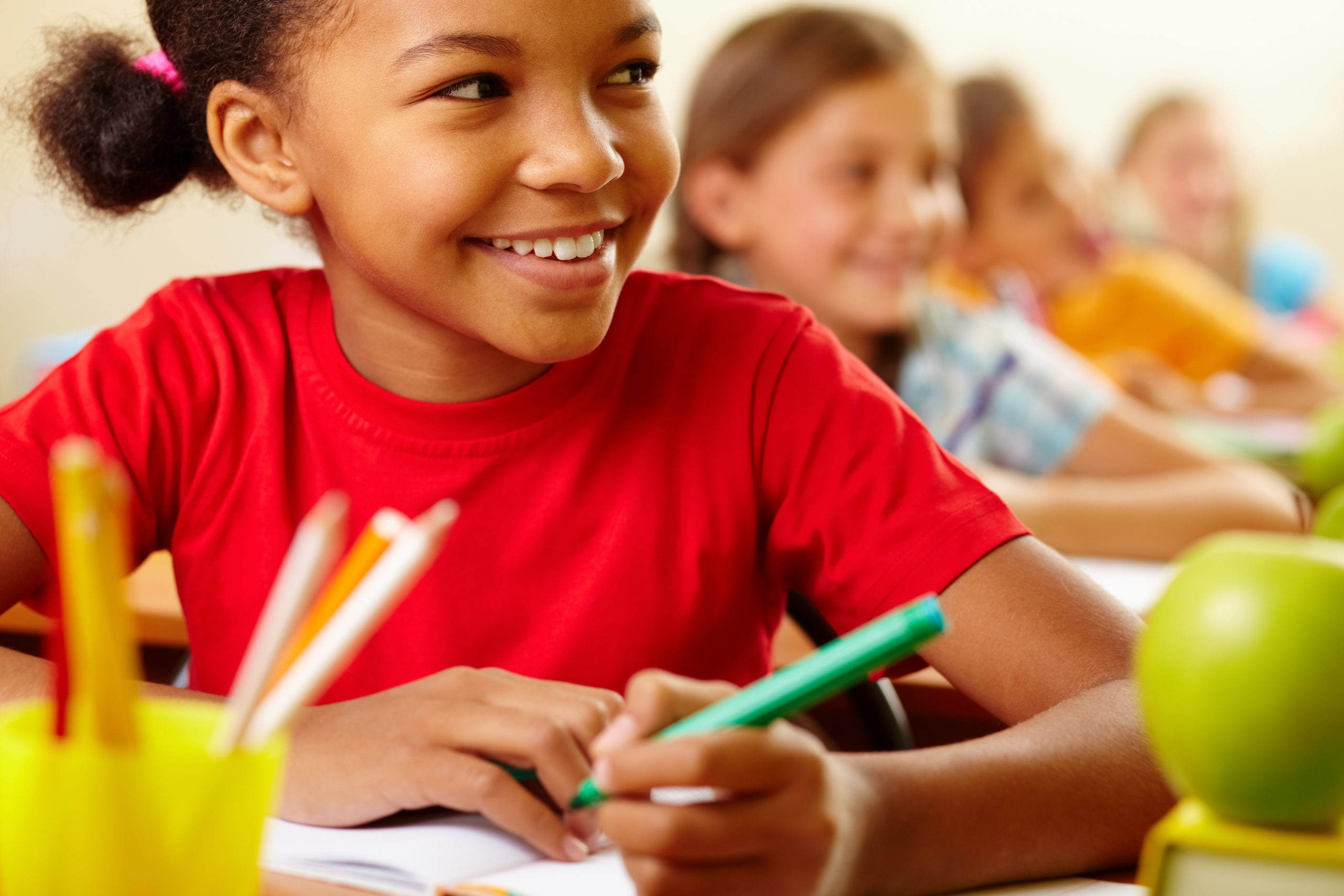 Why Private Schooling Is Preferred